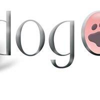 DogOne GmbH
