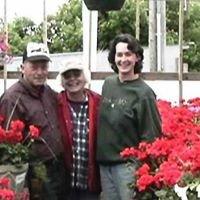 Wendlandt Greenhouse LLC