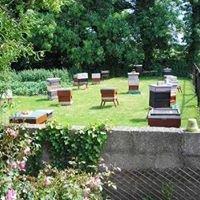 Beekeepingni