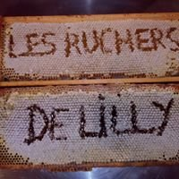 Les ruchers de Lilly