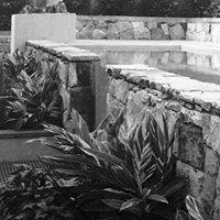 Banksia Design Group