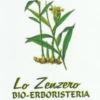 Lo Zenzero BIO-ERBORISTERIA