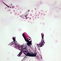~Wisdom of Rumi~