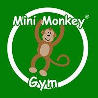 Mini Monkey Gym - North East Yorkshire