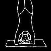 Centro Yoga Samsara