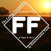 The Luling Foundation