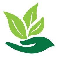 Multiservices Vert Inc.