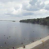 Hanningfield Reservoir & Nature Reserve
