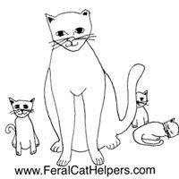 Feral Cat Helpers