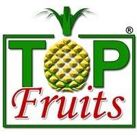 Topfruits