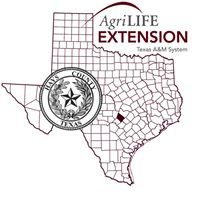 Hays County Youth Outreach Program / AgriLife Extension-TAMU