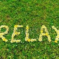 DeeVa Spa Esthetics & Relaxation