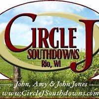 Circle J Southdowns