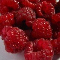 Poppysmic Produce