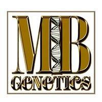 MB Genetics