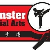Munster Martial Arts ITO Ireland