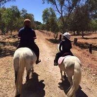 Beryl's Riding School