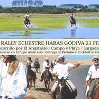 Haras Godiva