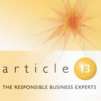 Article 13 (CSR & Sustainability consultancy)