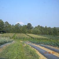 Hudson Farms