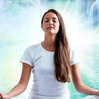 Meditation and Kinesiology Workshops