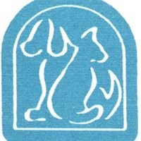 City Animal Hospital Ltd.