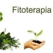 Fitoterapia y Analizador Bio eléctrico.
