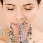 Fleurs De France-Cosmetics Online Store