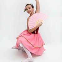 Instituto de Dança Priscila Ferraz