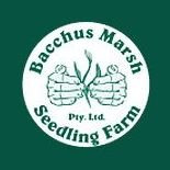 Bacchus Marsh Seedling Farm