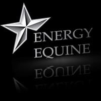 Energy Equine Veterinary Services