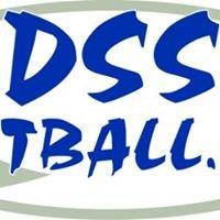 DSSP8NTBALL.COM