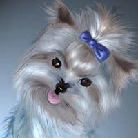 Precious Pet Boutique & Grooming