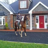 Grangeclare Paddocks Farmhouse Accommodation