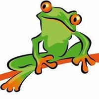 Green frog garden design