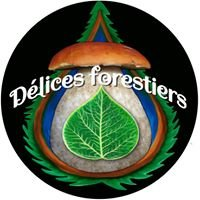 Délices forestiers