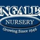 Engalls Nursery