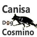 Canisa Dog Cosmino