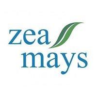 Zea Mays Erboristeria