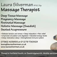 Laura Silverman Massage Therapist