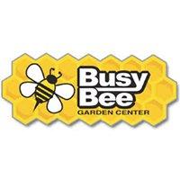 Busy Bee Nursery