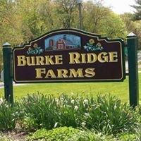 Burke Ridge Farms