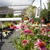 Farrill's Sunrise Nursery and Garden Center