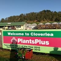Cloverlea Plants Plus
