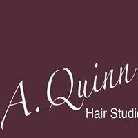 A.Quinn Hair Studio