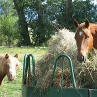 The Hay Place