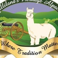 Gilliland's Heritage Alpacas (The Official Site)