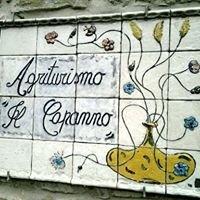 Azienda Agrituristica Il Capanno