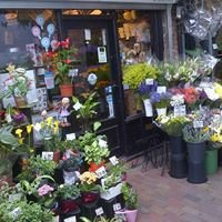 Wells Flowers