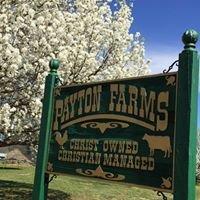 Payton Farms